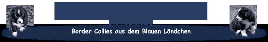 bluecountyborder